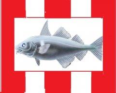 Pottered Haddock